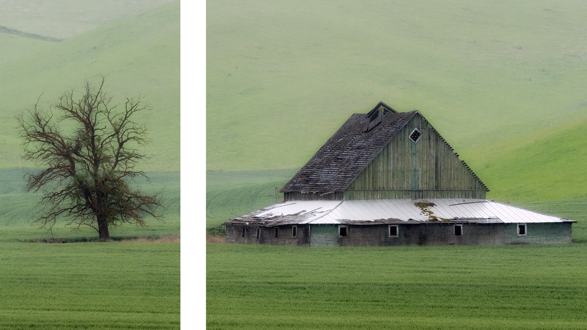 Lynda > Advanced Photography: Diptychs, Triptychs, and Aspect Ratios